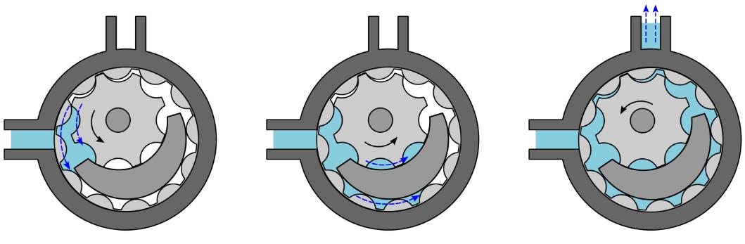 Internal Gear Pump Operation (with crescent)
