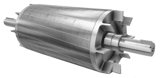 Induction Motor Rotor